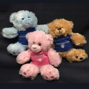 BWH-3-bears